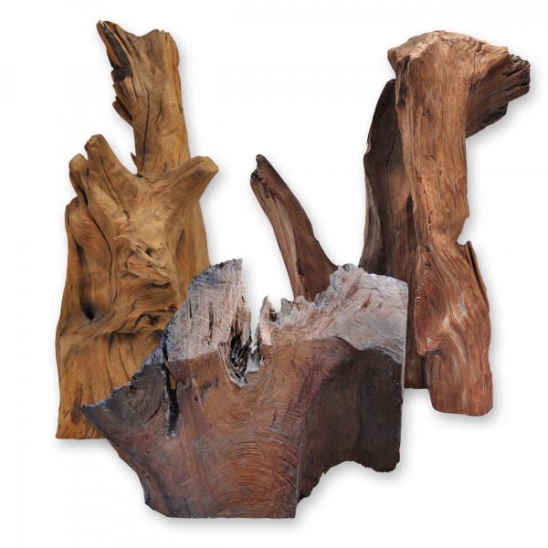 Racines, bois flotté, Tailles de 30 à 120 cm Pour : Terrarium, Aquarium, Jardin, Floriculture