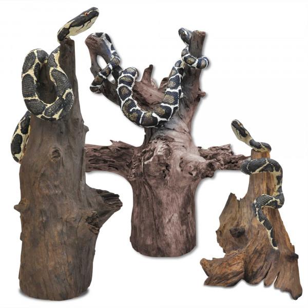 Schlange auf Holzwurzel