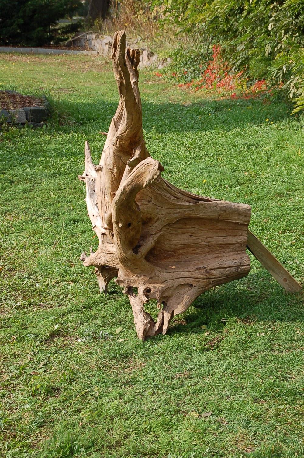 tropenholz wurzel. Black Bedroom Furniture Sets. Home Design Ideas