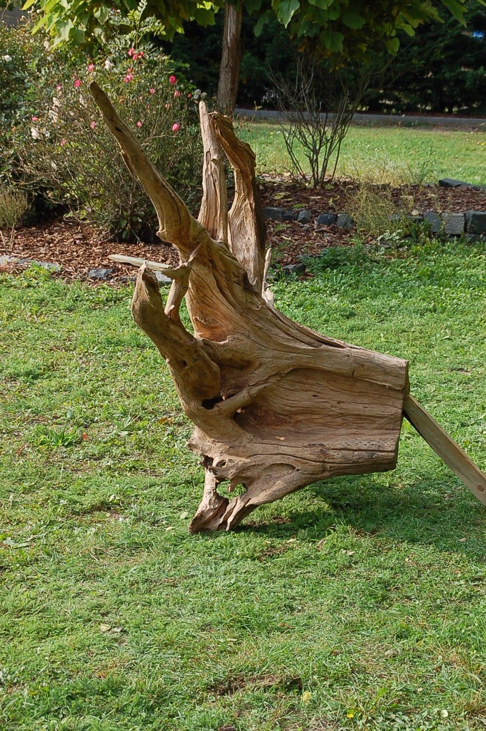 Tropenholz wurzel - Wurzel deko garten ...